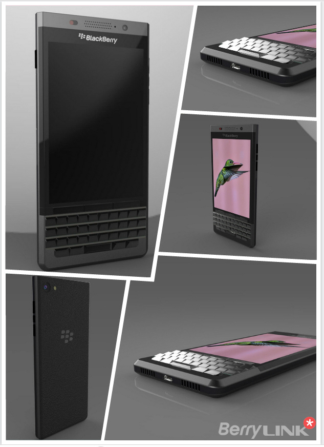 Vienna-blackberry-3d