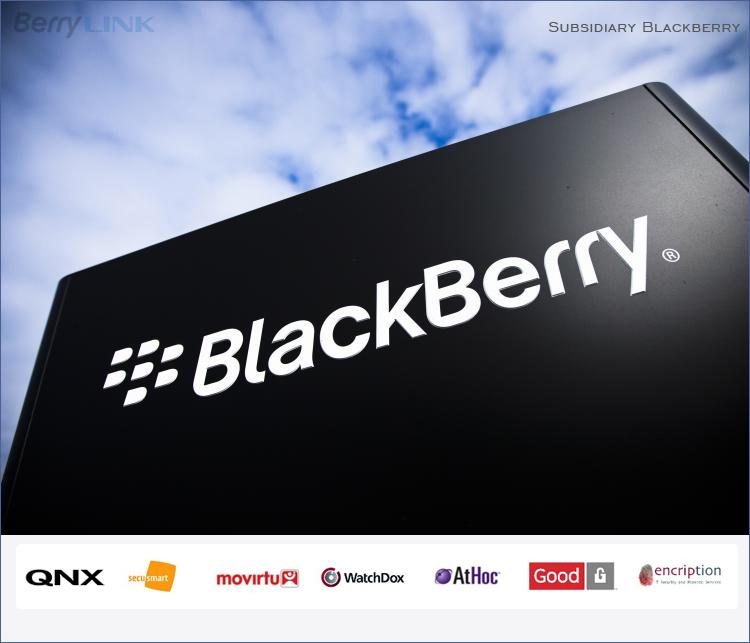 黑莓子公司介绍