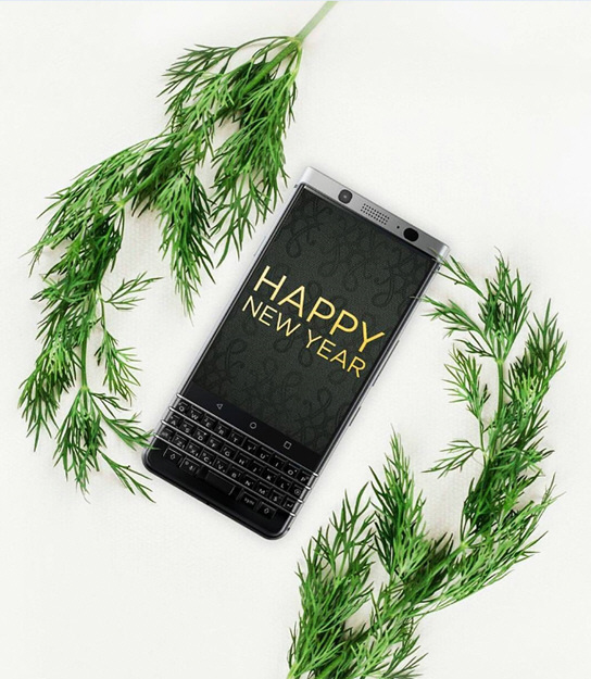 """黑莓新年""""莓图""""一组"""