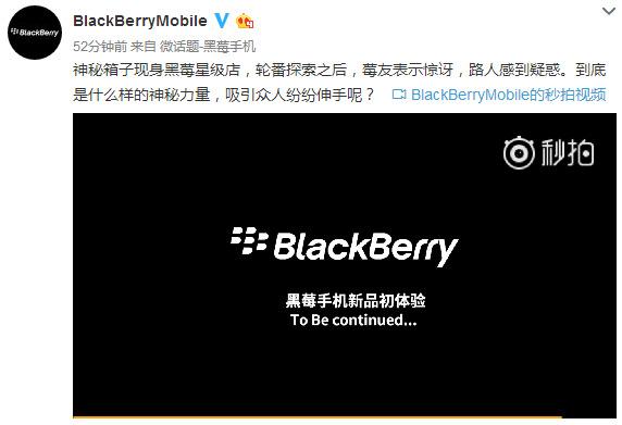 黑莓中国微博截图