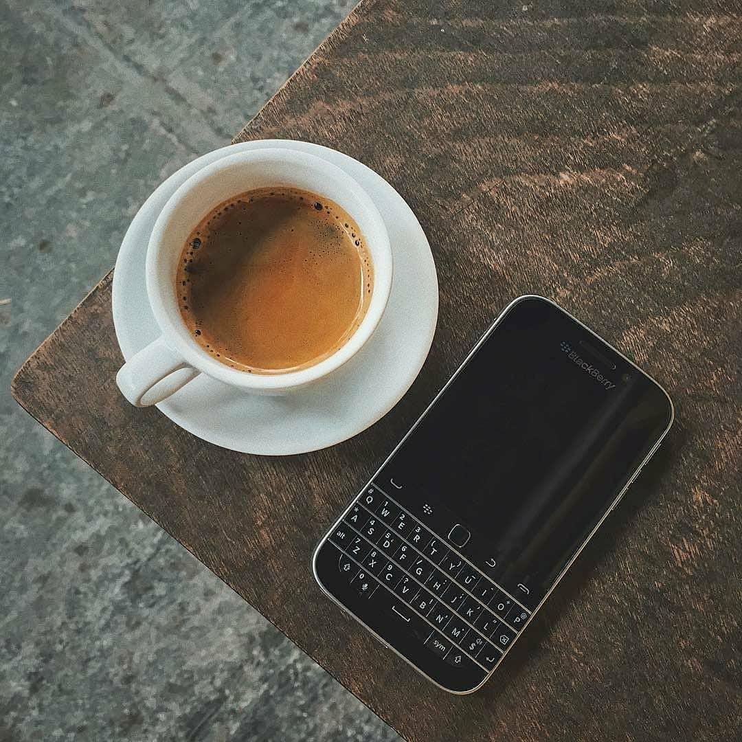 Blackberry #莓图#欣赏